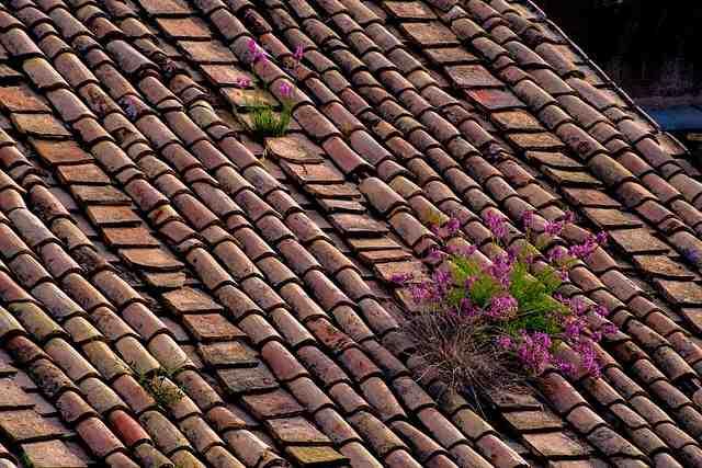 Comment rénover une toiture en tuile?